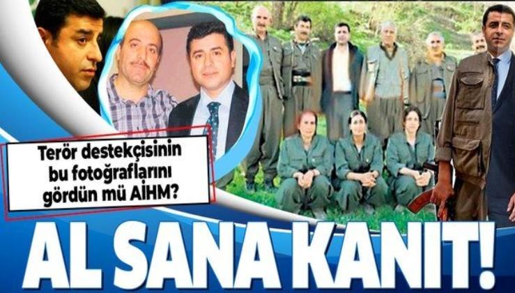 SON DAKİKA: AİHM'den skandal Selahattin Demirtaş kararı! İşte terör destekçiliğinin fotoğrafları