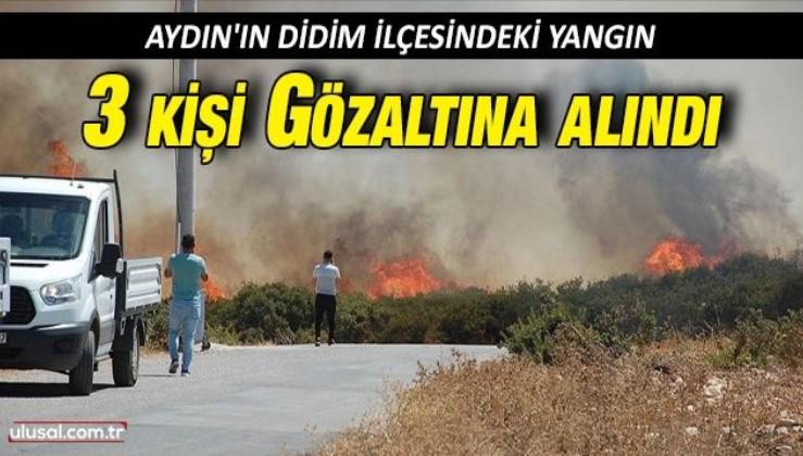 Aydın'ın Didim ilçesindeki yangın: 3 kişi gözaltına alındı