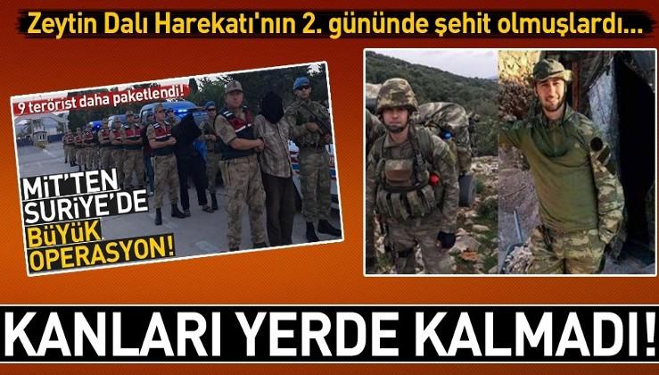 Askerlerimizi şehit eden 9 PKK/YPG'li Afrin'de yakalanıp getirildi