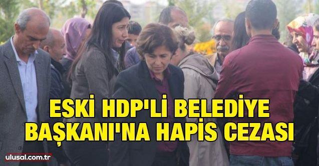 Eski HDP'li Belediye Başkanı'na hapis cezası