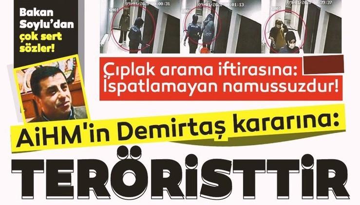 SON DAKİKA HABERİ: Soylu'dan AİHM'in Demirtaş kararı ve çıplak arama iftirasına çok sert sözler: Namussuzdur...