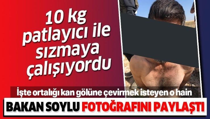 Türkiye'de eylem yapacaktı! PYD/YPG'li terörist Şanlıurfa Akçakale'de patlayıcı ile yakalandı