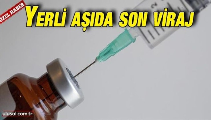 Yerli aşı çalışmaları: Faz-3'e Mayıs ayında geçilecek