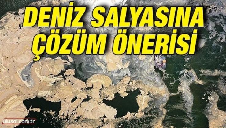 Deniz salyasına reaktif oksijen ile çözüm önerisi