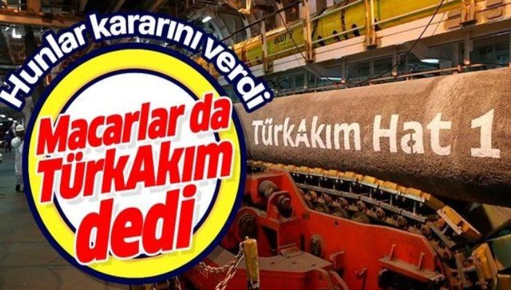 Macaristan da TürkAkım dedi! Yatırım projesi gerçekleştirecek