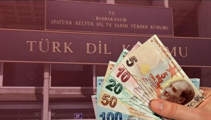 TDK Başkanı'ndan yabancı tabelalar için öneri: Fazla vergi alınabilir