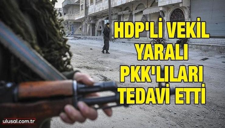 HDP'li vekil yaralı PKK'lıları tedavi etti