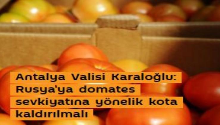 Antalya Valisi Karaloğlu: Rusya'ya domates sevkiyatına yönelik kota kaldırılmalı