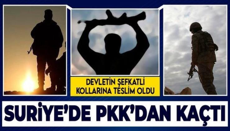 Terör örgütü PKK'dan kaçan 1 terörist, devletin şefkatli kollarına teslim oldu