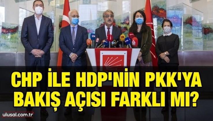 CHP ile HDP'nin PKK'ya bakış açısı farklı mı?