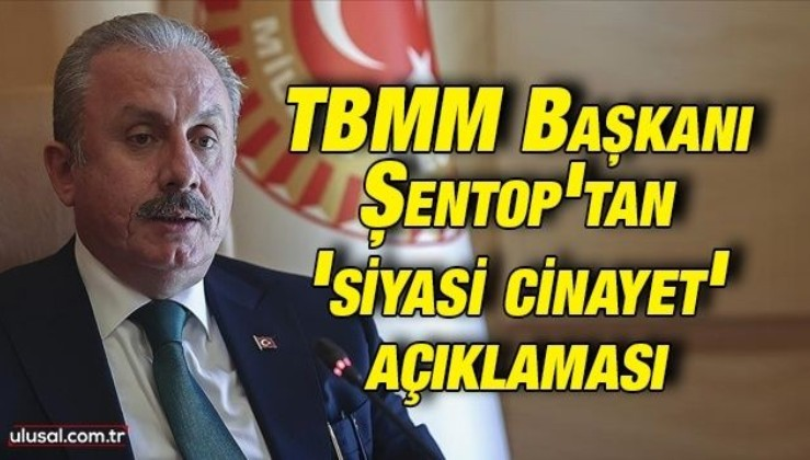TBMM Başkanı Şentop'tan 'siyasi cinayet' açıklaması