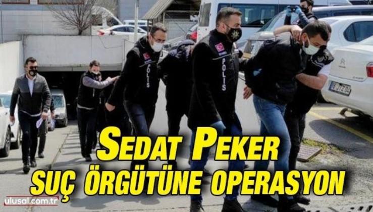 Sedat Peker suç örgütüne operasyon: 9 tutuklama