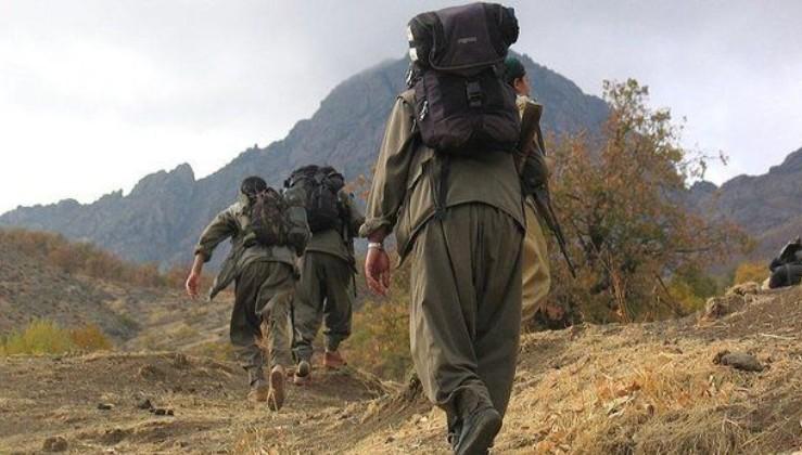 Barış Pınarı Harekatı'nda suçüstü yakalanmışlardı! 8 PKK'lıya müebbet hapis!