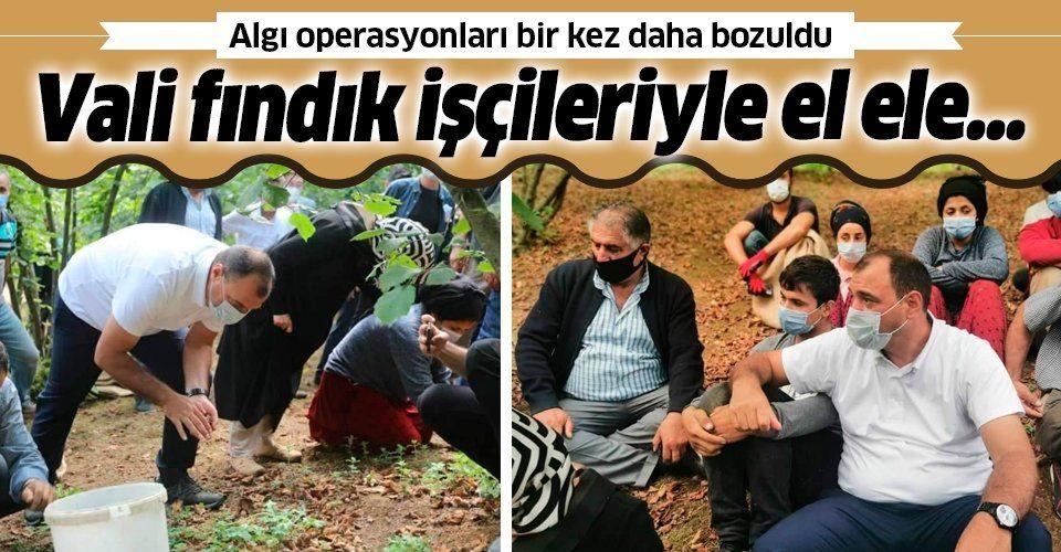 'Kürt işçilere saldırı' yalanı bir kez daha patladı! Sakarya Valisi Çetin Oktay Kaldırım fındık işçileri ile el ele...