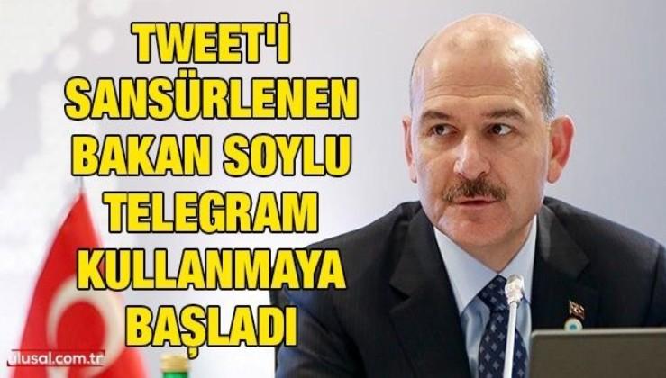 Tweet'i sansürlenen Bakan Soylu Telegram kullanmaya başladı