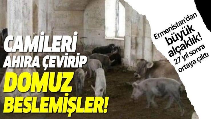 Ermenistan'ın alçaklığı bir kez daha gözler önüne serildi! Dağlık Karabağ'da camileri ahıra çevirip domuz beslemişler!