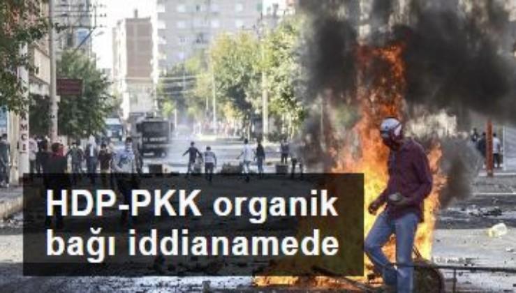HDP-PKK organik bağı iddianamede