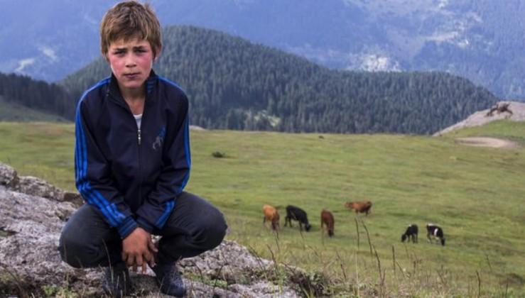 Eren Bülbül'ü şehit eden teröristin cenazesine katılan HDP'lilere soruşturma.