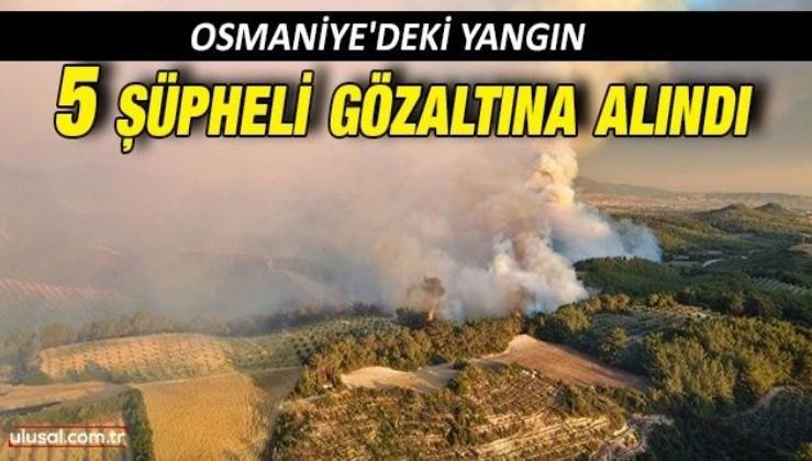 Osmaniye'deki yangınla ilgili 5 kişi gözaltına alındı