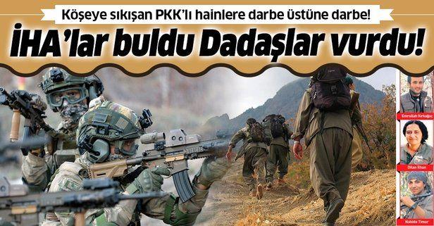 SON DAKİKA: Herekol Dağı'nda çırpınan terör örgütü PKK'ya 'Dadaşlar' darbesi