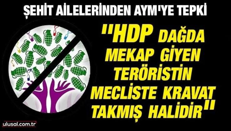 Şehit ailelerinden AYM'ye tepki: ''HDP dağda mekap giyen teröristin mecliste kravat takmış halidir''