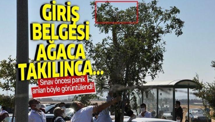 Gaziantep'te ilginç olay: Rüzgarın uçurduğu YKS giriş belgesi ağacın dalına takıldı