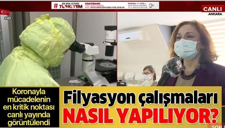 Filyasyon nedir? Filyasyon Türkiye'de koronavirüse karşı nasıl uygulanıyor?