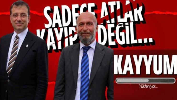 HDP yanlısı başkan için yolun sonu: Adalar Belediyesi'ne kayyum atanabilir! Sadece atlar değil araçlar da kayıp