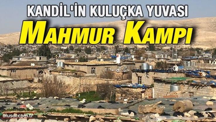 Kandil'in kuluçka yuvası: Mahmur Kampı