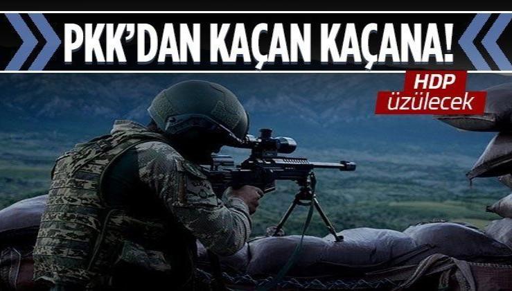 Son dakika: İçişleri Bakanlığı duyurdu: 5 PKK'lı terörist teslim oldu