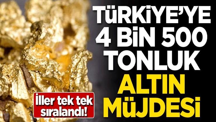 İller tek tek sıralandı! Türkiye'ye 4 bin 500 tonluk altın müjdesi