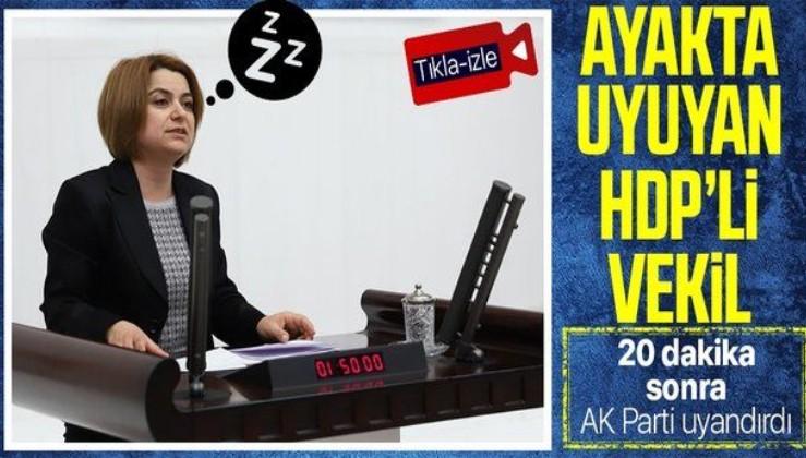 Gündemden bihaber HDP Muş Milletvekili Gülistan Kılıç Koçyiğit'ten pes dedirten hata! 20 dakika boyunca yanlış yılı anlattı