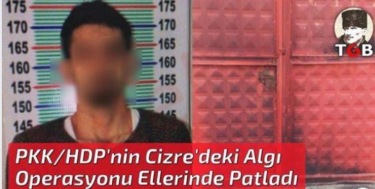 PKK/HDP'nin Cizre'deki Algı Operasyonu Ellerinde Patladı