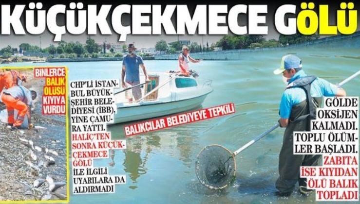 Küçükçekmece Gölü'nde binlerce balık ölüsü kıyıya vurdu: Vatandaşlar İBB'ye isyan etti