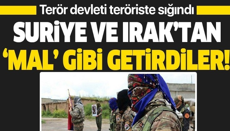 Terör devleti Ermenistan terörist PKK'ya sığındı! Suriye ve Irak'tan 'mal' gibi getirdiler