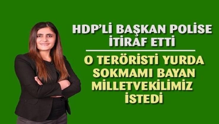 Teröristi yurda sokan HDP'li, emri veren milletvekilinin ismini verdi