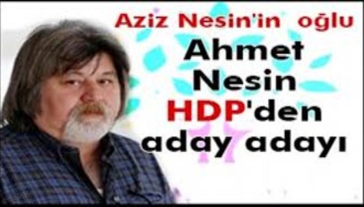Türkler mi Nesin mi daha zeki?