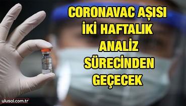 Türkiye'ye getirilen 6,5 milyon doz CoronaVac aşısı iki haftalık analiz sürecinden geçecek