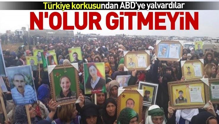 Terör örgütü PKK ABD'nin bölgeden çekilmesini protesto ediyor.