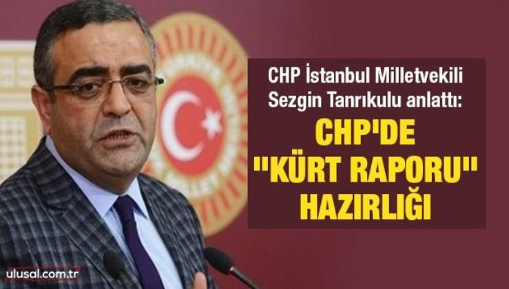 """CHP İstanbul Milletvekili Sezgin Tanrıkulu anlattı: CHP'de """"Kürt Raporu"""" hazırlığı"""