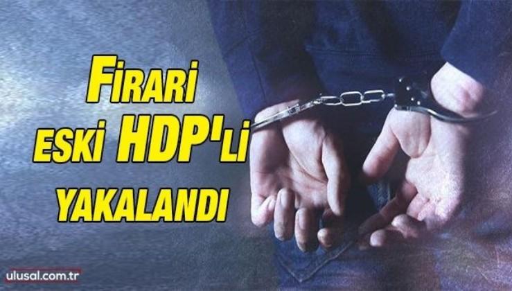 Firari eski HDP'li yakalandı