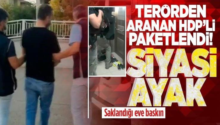 Terörden aranan Şırnak eski belediye başkanı HDP'li Serhat Kadırhan yakalandı!