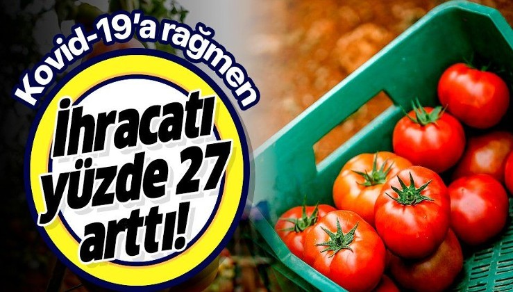 Son dakika: Antalya'da yaş sebze meyve ihracatı yüzde 27 arttı