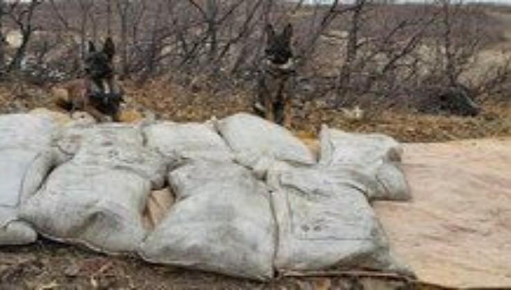 Bingöl'de PKK'ya ait 450 kilo 'amonyum nitrat' ele geçirildi.