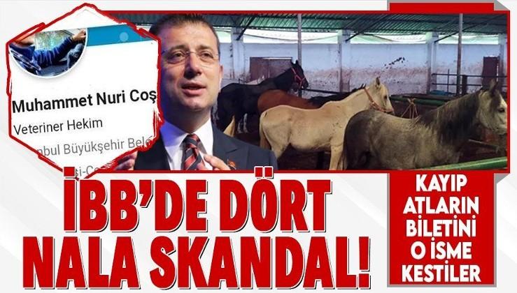 """İBB'nin """"kayıp at"""" skandalında flaş gelişme! Şube Müdürü Muhammet Nuri Coşkun görevinden alındı"""
