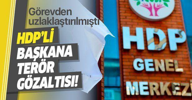 Son dakika: HDP'li Batman Belediye Başkanı Mehmet Demir'e terör gözaltısı!