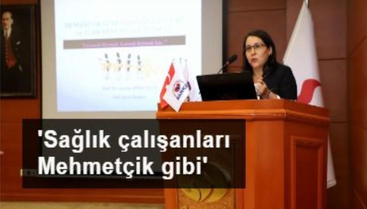 Türk Hemşireler Derneği Genel Başkanı Çelik: Sağlık çalışanları Mehmetçik gibi