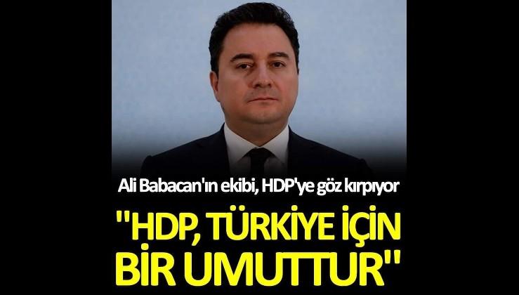 """Ali Babacan'ın ekibi, HDP'ye göz kırpıyor! """"HDP, Türkiye için bir umuttur"""""""