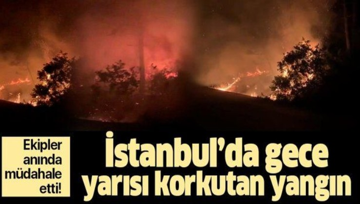 Son dakika: Sarıyer'de korkutan orman yangını