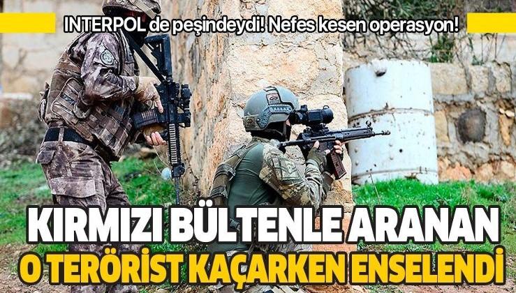 Son dakika: Kırmızı bültenle aranan PKK'lı terörist Sabri Dal yakalandı
